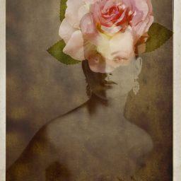 Giovanni Gastel – FLOWERS