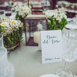 Matrimonio nell'uliveto
