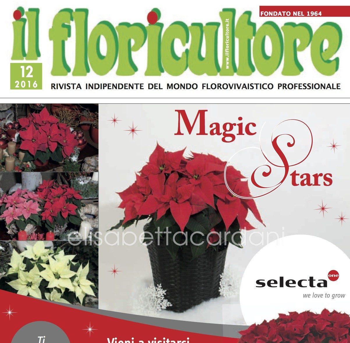 Intervista per Il floricultore